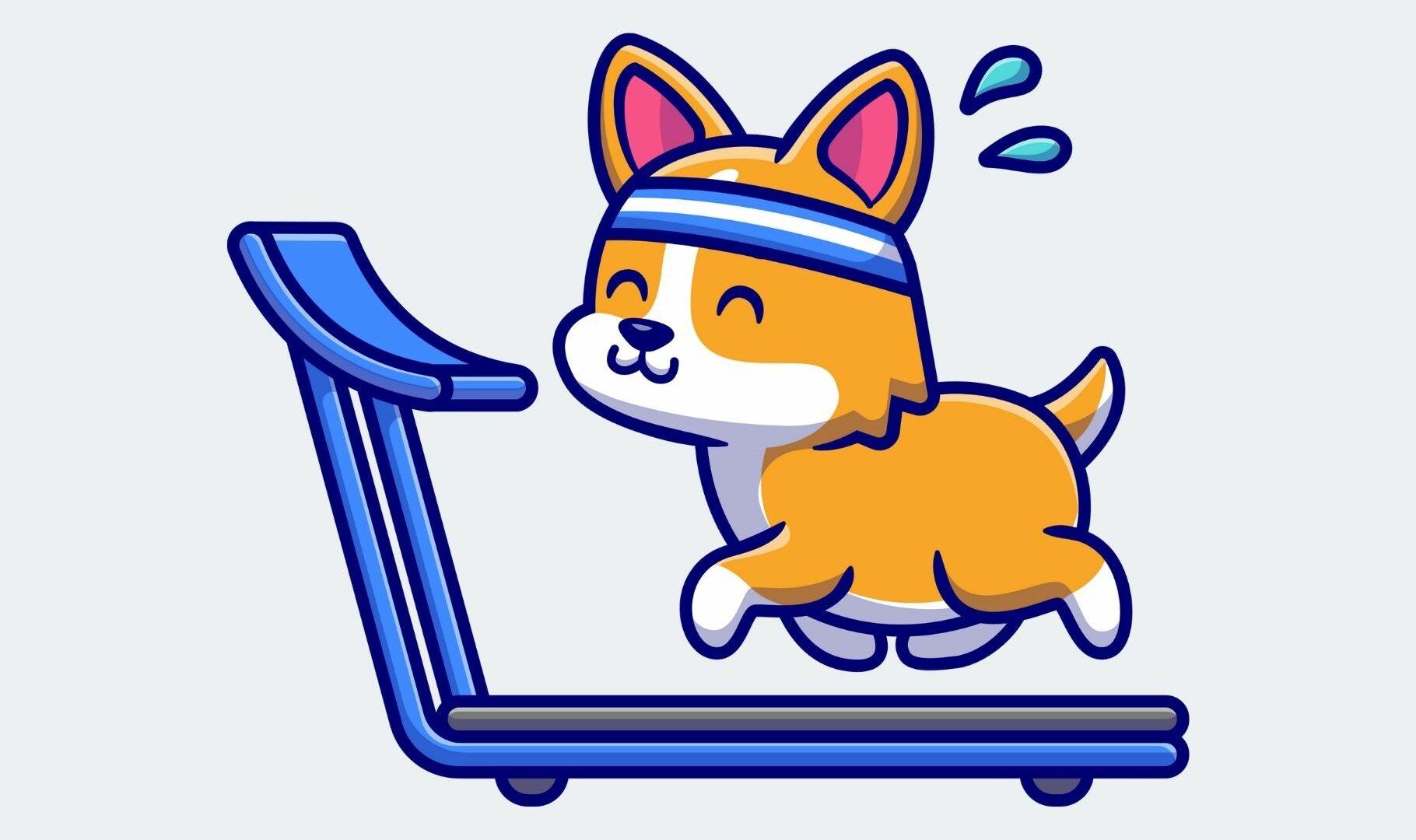 Mascotas fit thumbnail